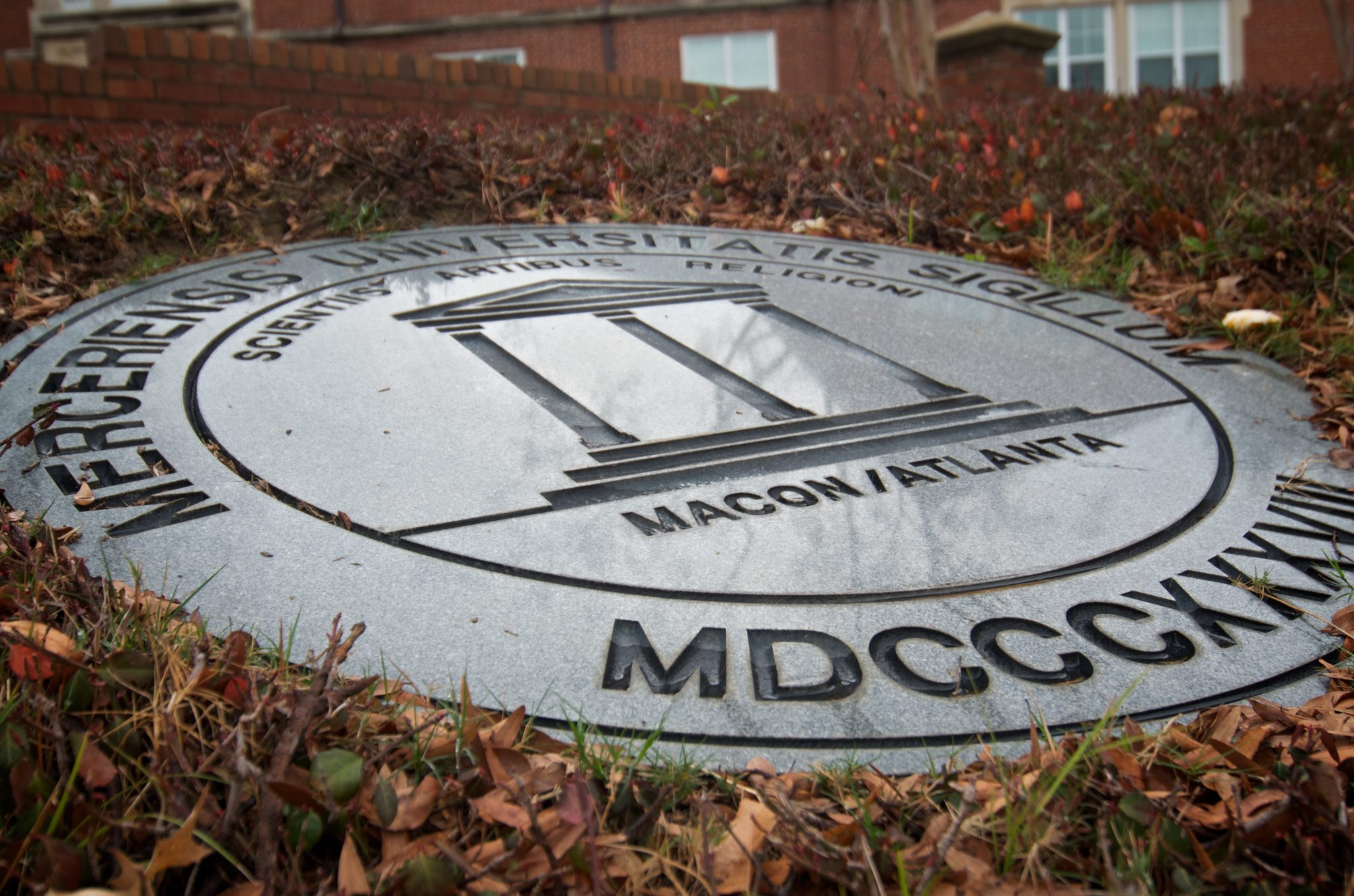 Mercer seal